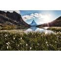 """ecofort WIST Bildheizung """"Matterhorn"""""""